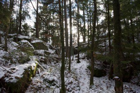 http://nordiska.fhsk.se/teater/wp-content/uploads/sites/5/2017/02/omg-5-450x300.jpg